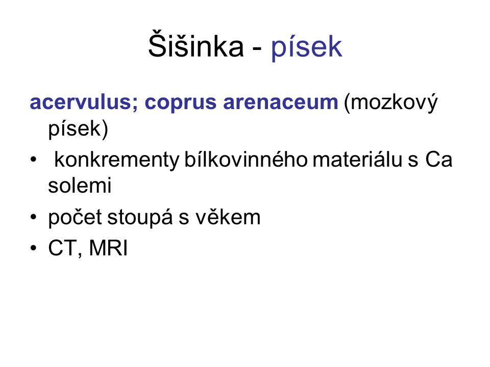 Šišinka - písek acervulus; coprus arenaceum (mozkový písek) konkrementy bílkovinného materiálu s Ca solemi počet stoupá s věkem CT, MRI