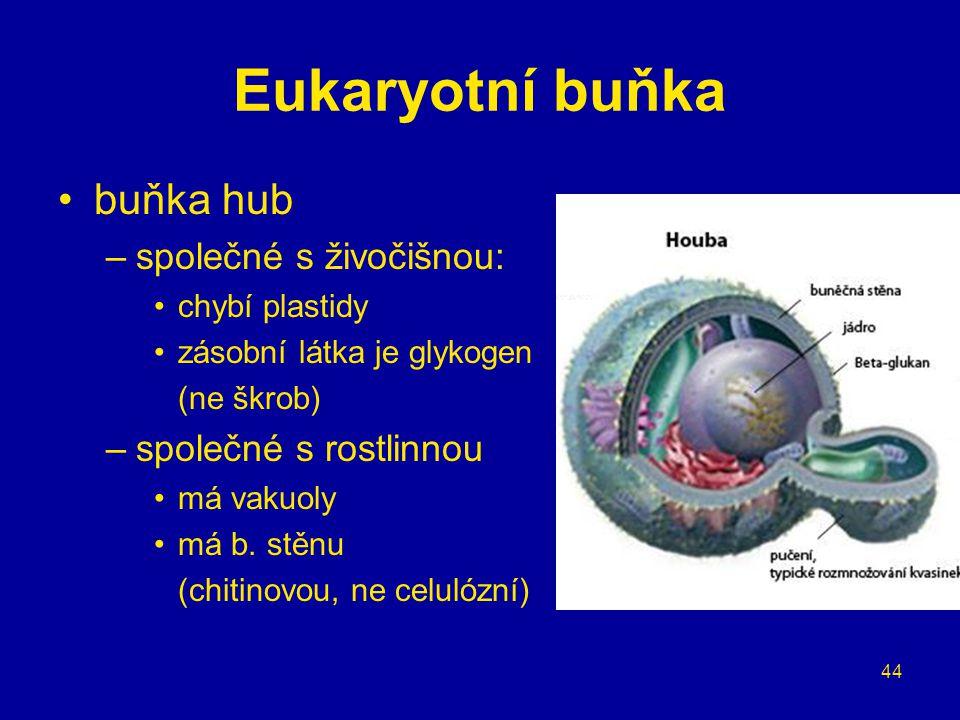 44 Eukaryotní buňka buňka hub –společné s živočišnou: chybí plastidy zásobní látka je glykogen (ne škrob) –společné s rostlinnou má vakuoly má b. stěn