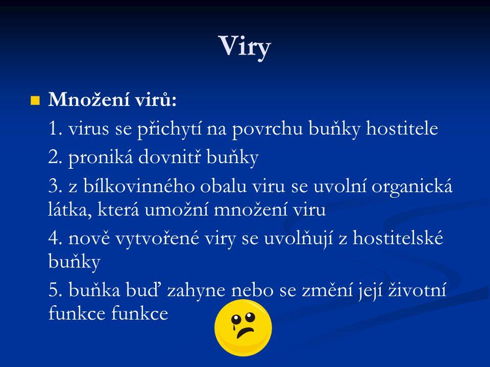 Viry Množení virů: 1. virus se přichytí na povrchu buňky hostitele 2. proniká dovnitř buňky 3. z bílkovinného obalu viru se uvolní organická látka, kt