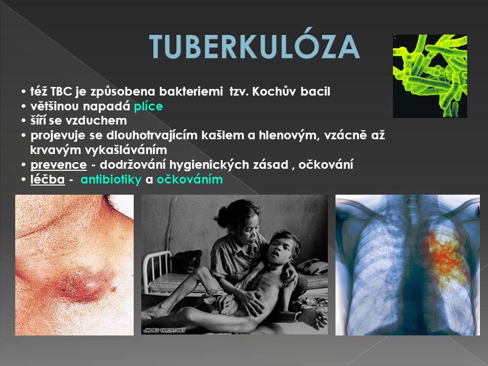 též TBC je způsobena bakteriemi tzv. Kochův bacil většinou napadá plíce šíří se vzduchem projevuje se dlouhotrvajícím kašlem a hlenovým, vzácně až krv
