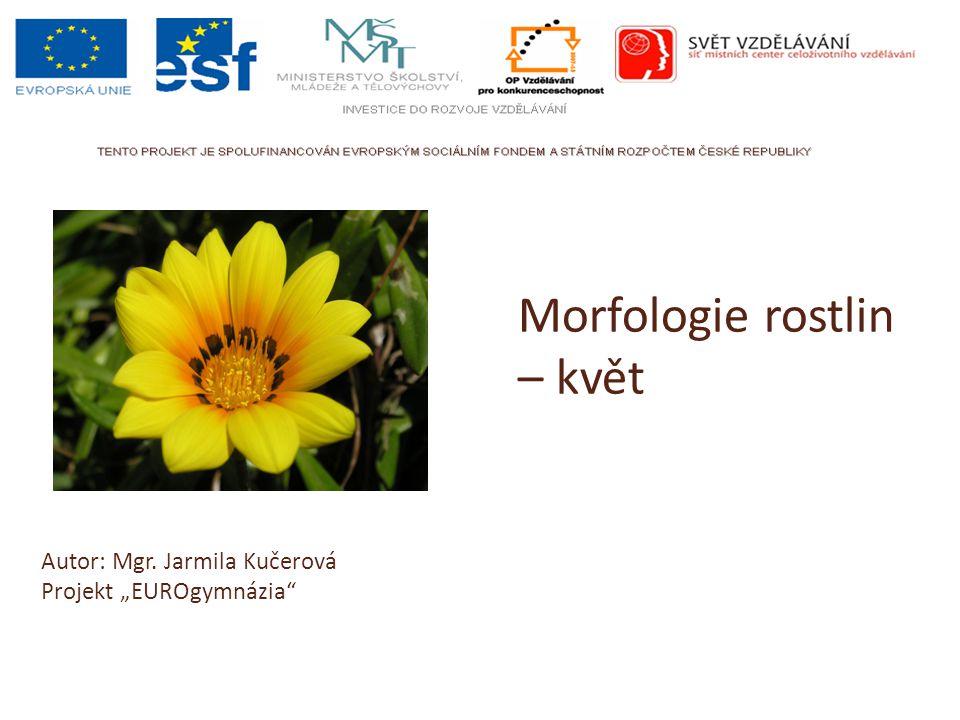 """Morfologie rostlin – květ Autor: Mgr. Jarmila Kučerová Projekt """"EUROgymnázia"""""""