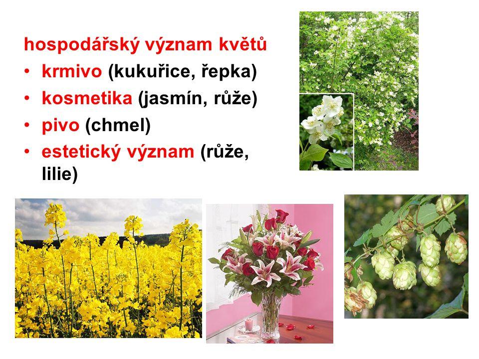 hospodářský význam květů krmivo (kukuřice, řepka) kosmetika (jasmín, růže) pivo (chmel) estetický význam (růže, lilie)