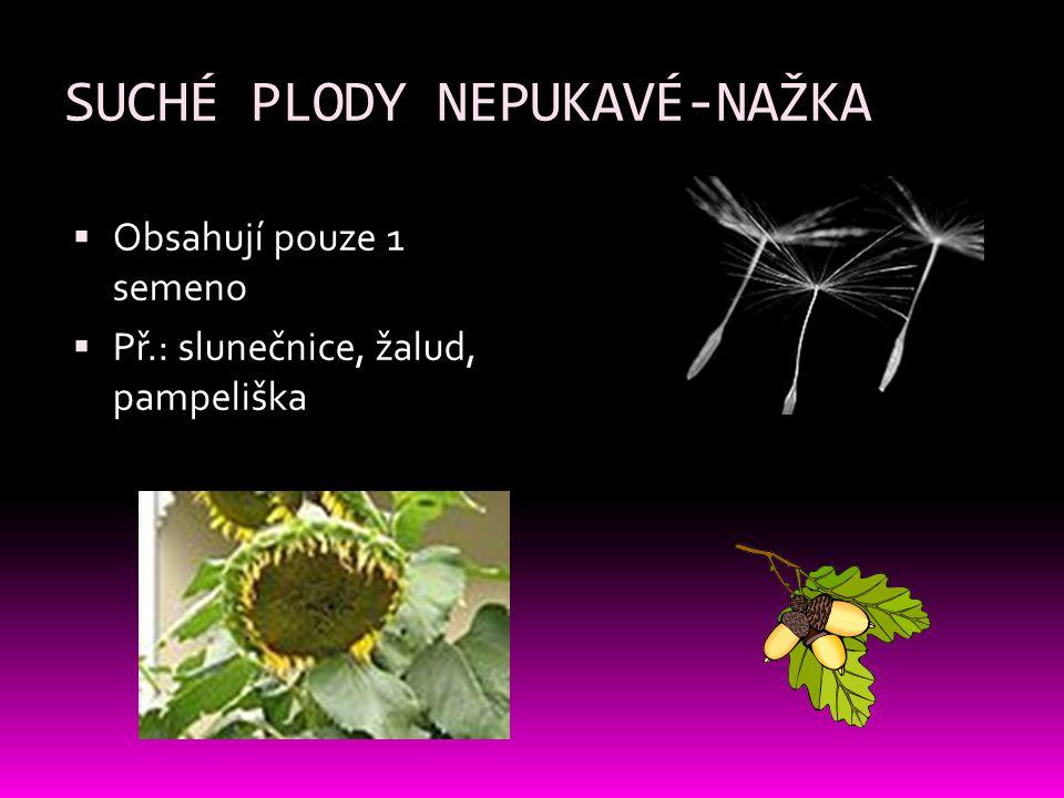 SUCHÉ PLODY NEPUKAVÉ-NAŽKA  Obsahují pouze 1 semeno  Př.: slunečnice, žalud, pampeliška