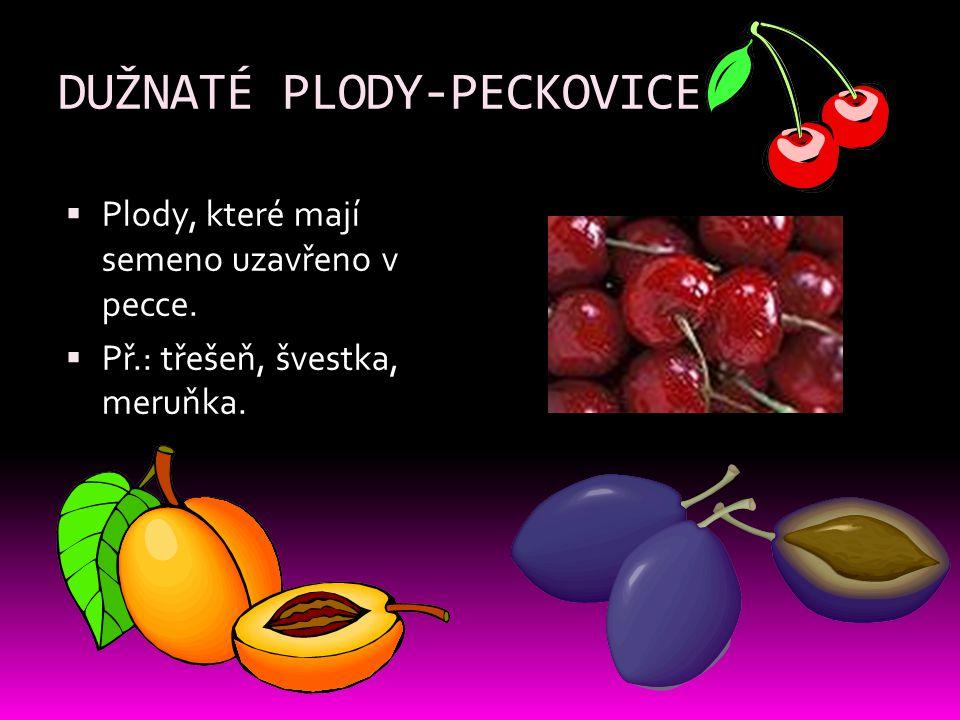 DUŽNATÉ PLODY-PECKOVICE  Plody, které mají semeno uzavřeno v pecce.