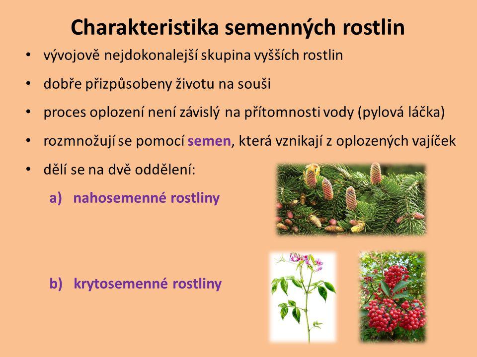 Charakteristika semenných rostlin vývojově nejdokonalejší skupina vyšších rostlin dobře přizpůsobeny životu na souši proces oplození není závislý na p