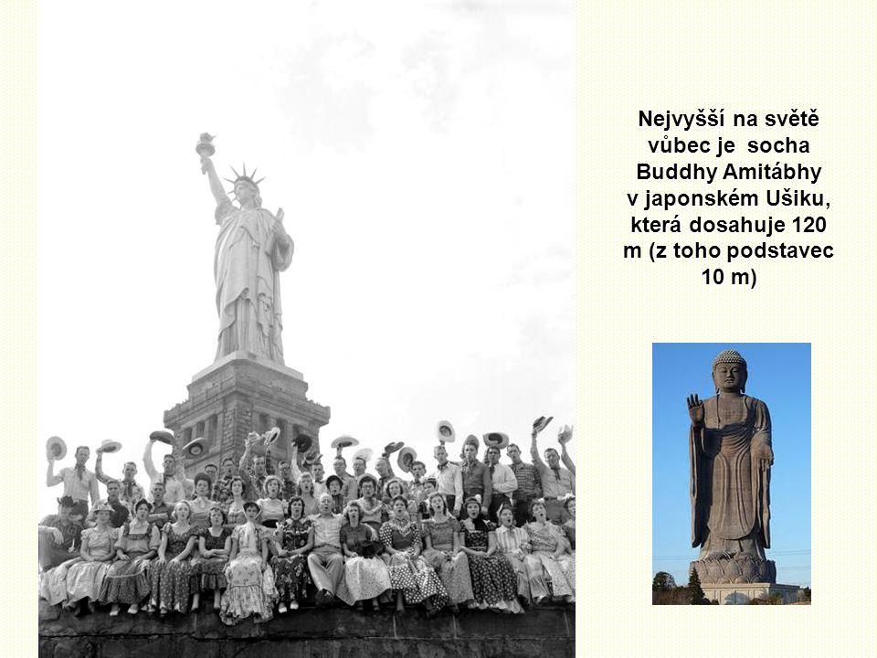Srovnání Pokud jde o sochy, není Socha svobody ani zdaleka nejvyšší volně stojící postavou světa. Kupříkladu Matka vlast na Mamajově mohyle ve Volgogr