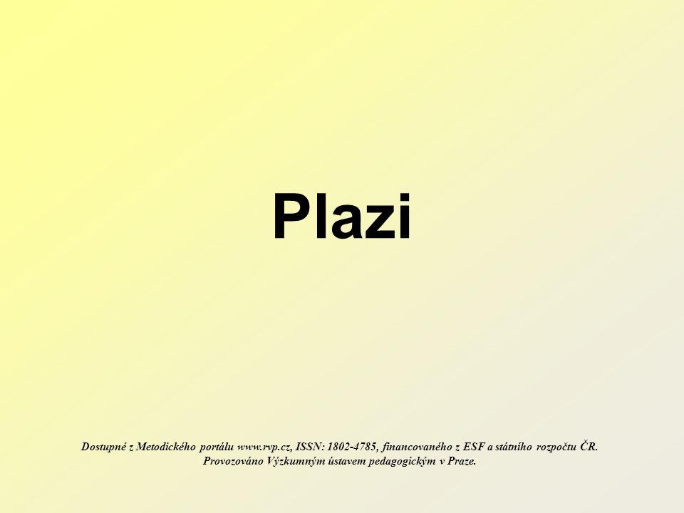 Plazi Dostupné z Metodického portálu www.rvp.cz, ISSN: 1802-4785, financovaného z ESF a státního rozpočtu ČR.