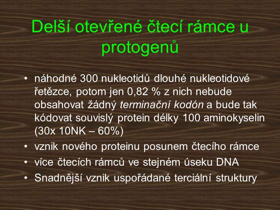 Delší otevřené čtecí rámce u protogenů náhodné 300 nukleotidů dlouhé nukleotidové řetězce, potom jen 0,82 % z nich nebude obsahovat žádný terminační k