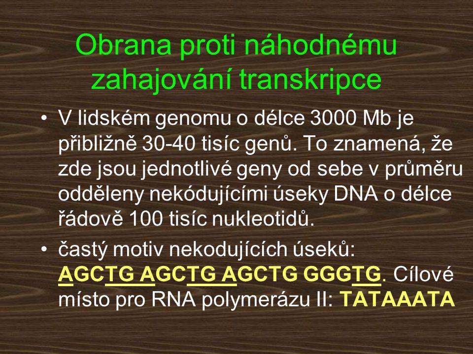V lidském genomu o délce 3000 Mb je přibližně 30-40 tisíc genů. To znamená, že zde jsou jednotlivé geny od sebe v průměru odděleny nekódujícími úseky