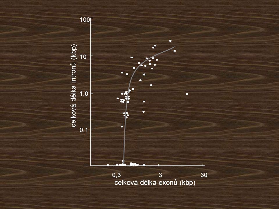 0,3330 celková délka exonů (kbp) 0,1 1,0 10 100 celková délka intronů (kbp)
