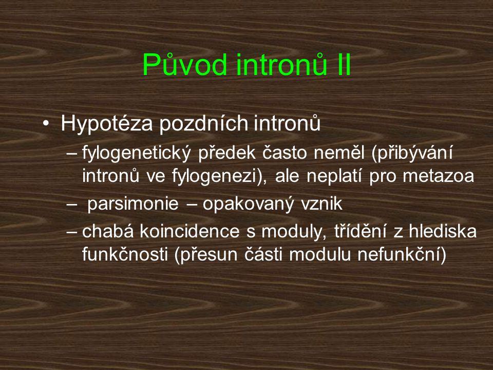 Původ intronů II Hypotéza pozdních intronů –fylogenetický předek často neměl (přibývání intronů ve fylogenezi), ale neplatí pro metazoa – parsimonie –