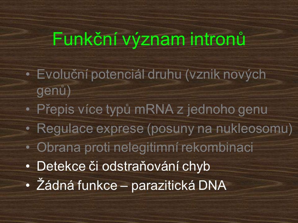 Funkční význam intronů Evoluční potenciál druhu (vznik nových genů) Přepis více typů mRNA z jednoho genu Regulace exprese (posuny na nukleosomu) Obran
