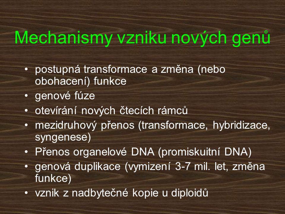 Mechanismy vzniku nových genů postupná transformace a změna (nebo obohacení) funkce genové fúze otevírání nových čtecích rámců mezidruhový přenos (tra
