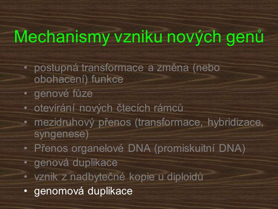 Mechanismy vzniku nových genů postupná transformace a změna (nebo obohacení) funkce genové fůze otevírání nových čtecích rámců mezidruhový přenos (tra