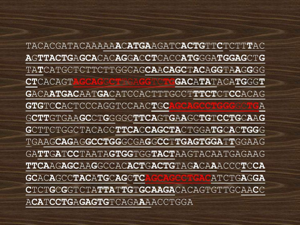 slabá homologie - rekombinace neprobíhá výrazná homologie - dochází k rekombinaci nefunkční produkty nehomologické rekombinace paralogy s vysokým stupněm homologie paralogy s vysokým stupněm homologie v oblasti exonů funkční nerekombinované geny a) b) Obrana proti nelegitimní rekombinaci