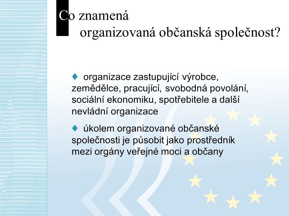 Co znamená organizovaná občanská společnost.