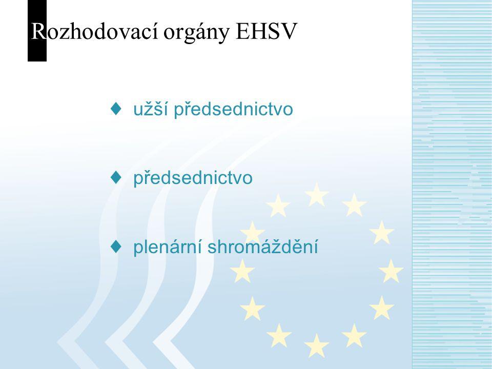 Rozhodovací orgány EHSV ♦ užší předsednictvo ♦ předsednictvo ♦ plenární shromáždění