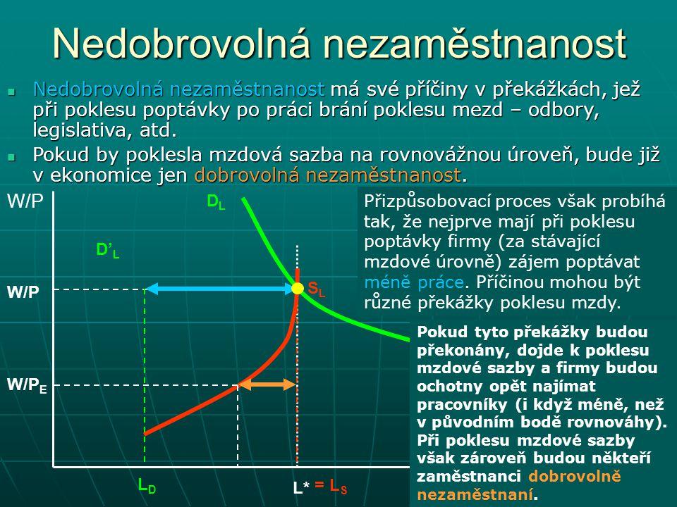 Nedobrovolná nezaměstnanost W/P L DLDL SLSL L*L* LDLD W/P E W/P = L S Nedobrovolná nezaměstnanost má své příčiny v překážkách, jež při poklesu poptávk