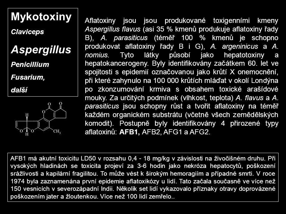 Mykotoxiny Claviceps Aspergillus Penicillium Fusarium, další Aflatoxiny jsou jsou produkované toxigenními kmeny Aspergillus flavus (asi 35 % kmenů pro