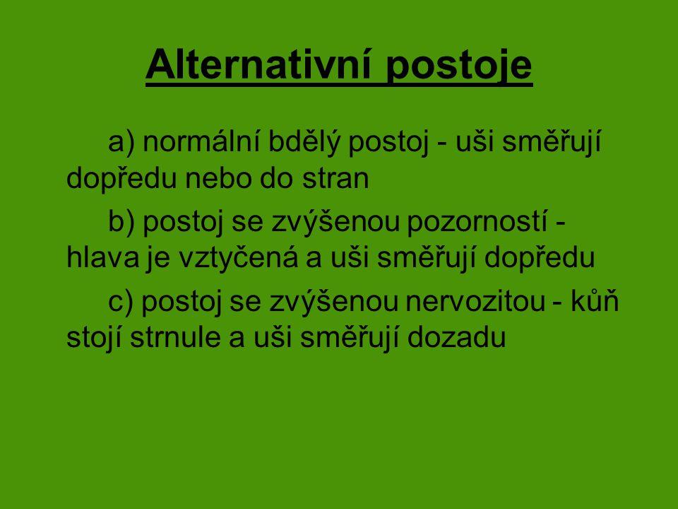 Alternativní postoje a) normální bdělý postoj - uši směřují dopředu nebo do stran b) postoj se zvýšenou pozorností - hlava je vztyčená a uši směřují dopředu c) postoj se zvýšenou nervozitou - kůň stojí strnule a uši směřují dozadu