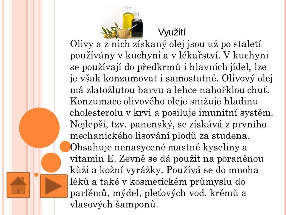Využití Olivy a z nich získaný olej jsou už po staletí používány v kuchyni a v lékařství.