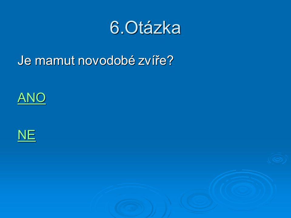 7.Otázka  Jaké vyjde číslo když 8 vydělíme 2 a vynásobíme 4?  4 4  8 8  16 16