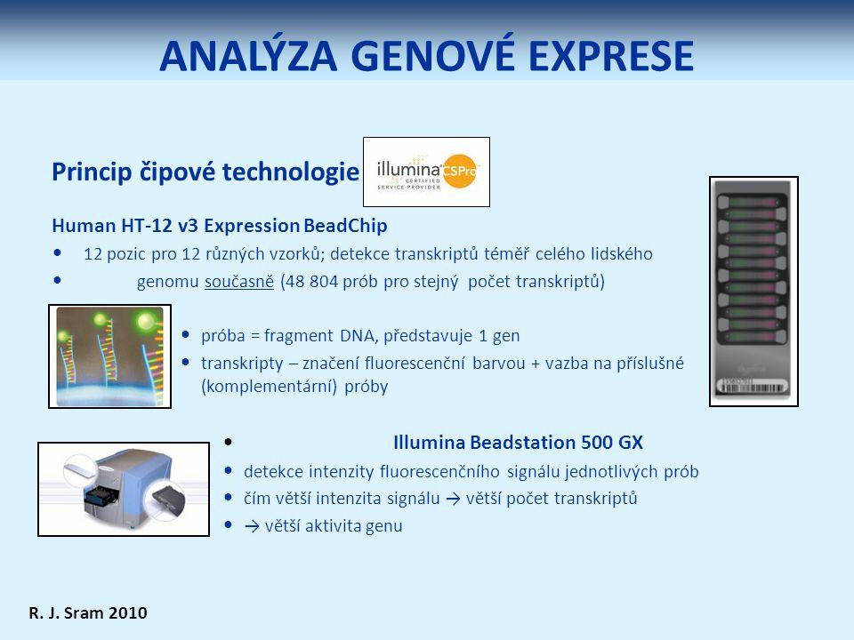Princip čipové technologie Human HT-12 v3 Expression BeadChip 12 pozic pro 12 různých vzorků; detekce transkriptů téměř celého lidského genomu současně (48 804 prób pro stejný počet transkriptů) próba = fragment DNA, představuje 1 gen transkripty – značení fluorescenční barvou + vazba na příslušné (komplementární) próby Illumina Beadstation 500 GX detekce intenzity fluorescenčního signálu jednotlivých prób čím větší intenzita signálu → větší počet transkriptů → větší aktivita genu R.