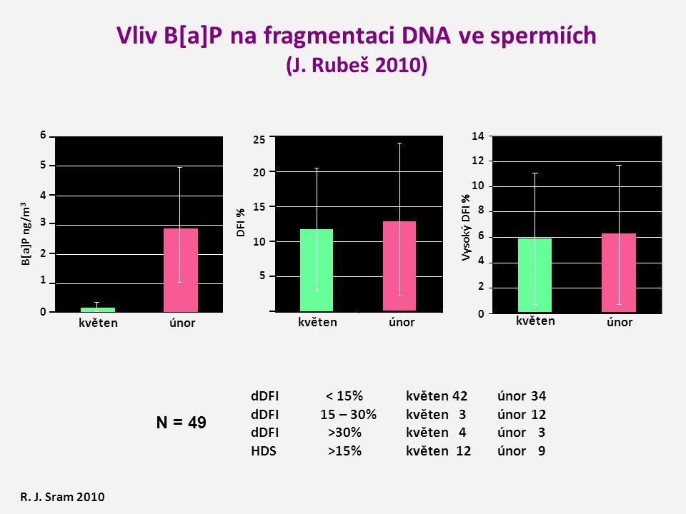 Vliv B[a]P na fragmentaci DNA ve spermiích (J.