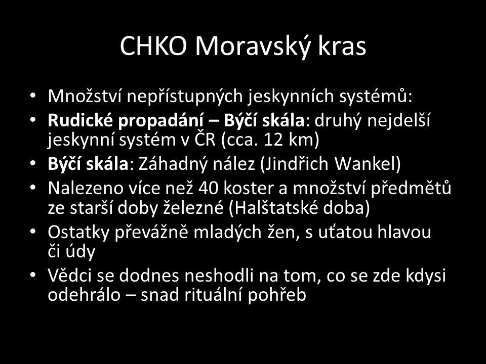 CHKO Moravský kras Množství nepřístupných jeskynních systémů: Rudické propadání – Býčí skála: druhý nejdelší jeskynní systém v ČR (cca. 12 km) Býčí sk