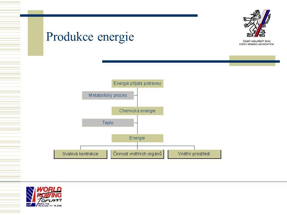Produkce energie