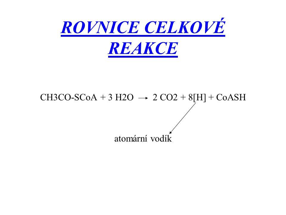 ROVNICE CELKOVÉ REAKCE CH3CO-SCoA + 3 H2O 2 CO2 + 8[H] + CoASH atomární vodík