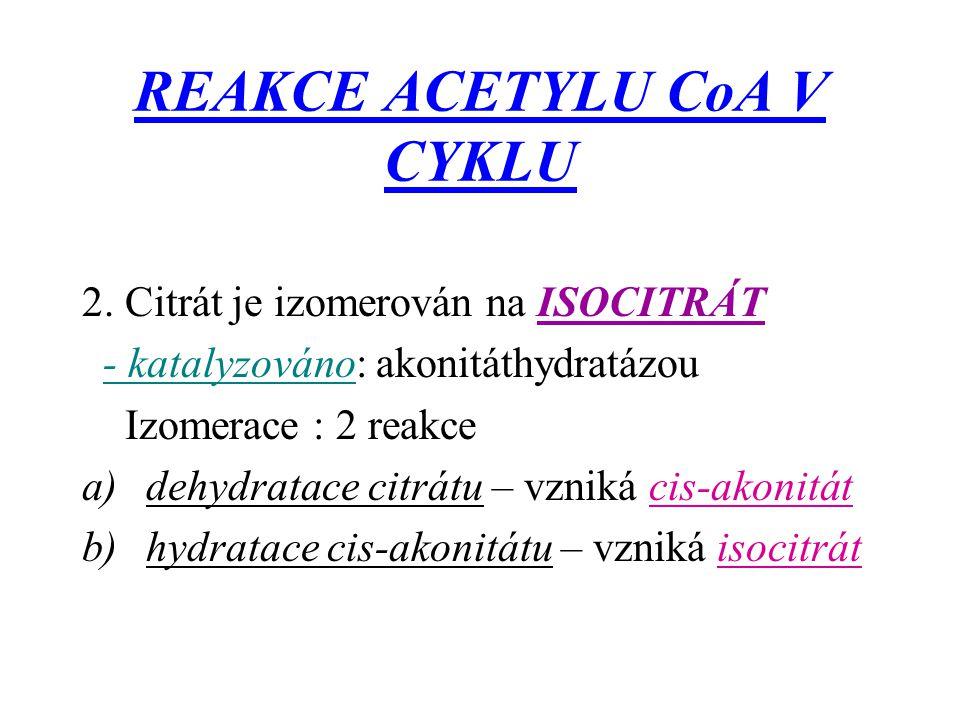 REAKCE ACETYLU CoA V CYKLU 2. Citrát je izomerován na ISOCITRÁT - katalyzováno: akonitáthydratázou Izomerace : 2 reakce a)dehydratace citrátu – vzniká