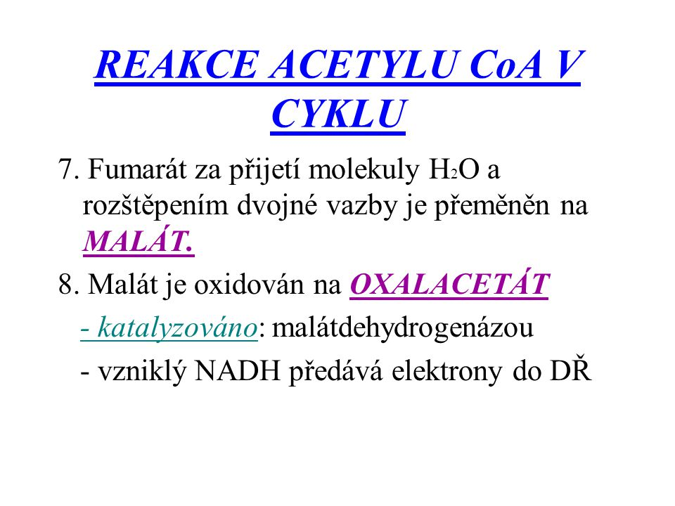 REAKCE ACETYLU CoA V CYKLU 7. Fumarát za přijetí molekuly H 2 O a rozštěpením dvojné vazby je přeměněn na MALÁT. 8. Malát je oxidován na OXALACETÁT -