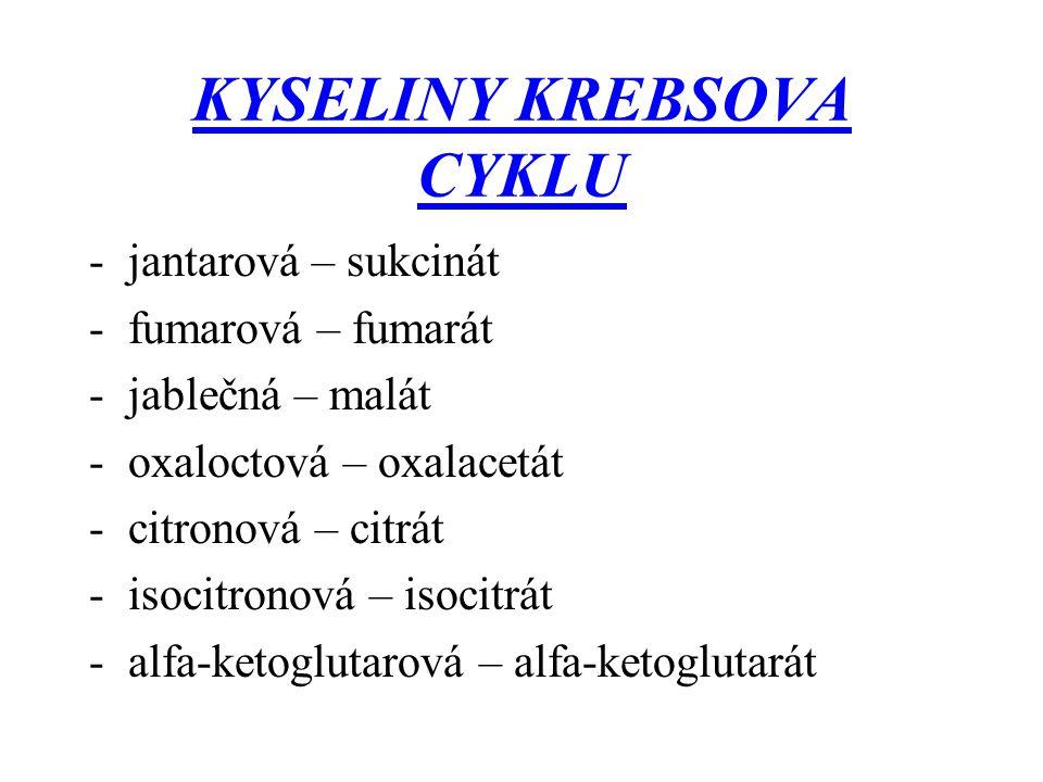 KYSELINY KREBSOVA CYKLU -jantarová – sukcinát -fumarová – fumarát -jablečná – malát -oxaloctová – oxalacetát -citronová – citrát -isocitronová – isoci