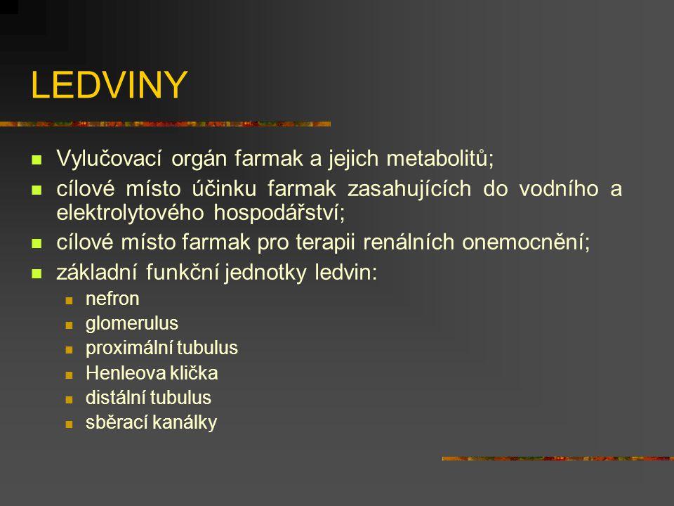 LEDVINY Vylučovací orgán farmak a jejich metabolitů; cílové místo účinku farmak zasahujících do vodního a elektrolytového hospodářství; cílové místo f