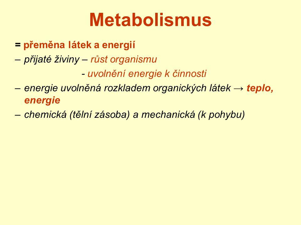 Metabolismus = přeměna látek a energií –přijaté živiny – růst organismu - uvolnění energie k činnosti –energie uvolněná rozkladem organických látek →