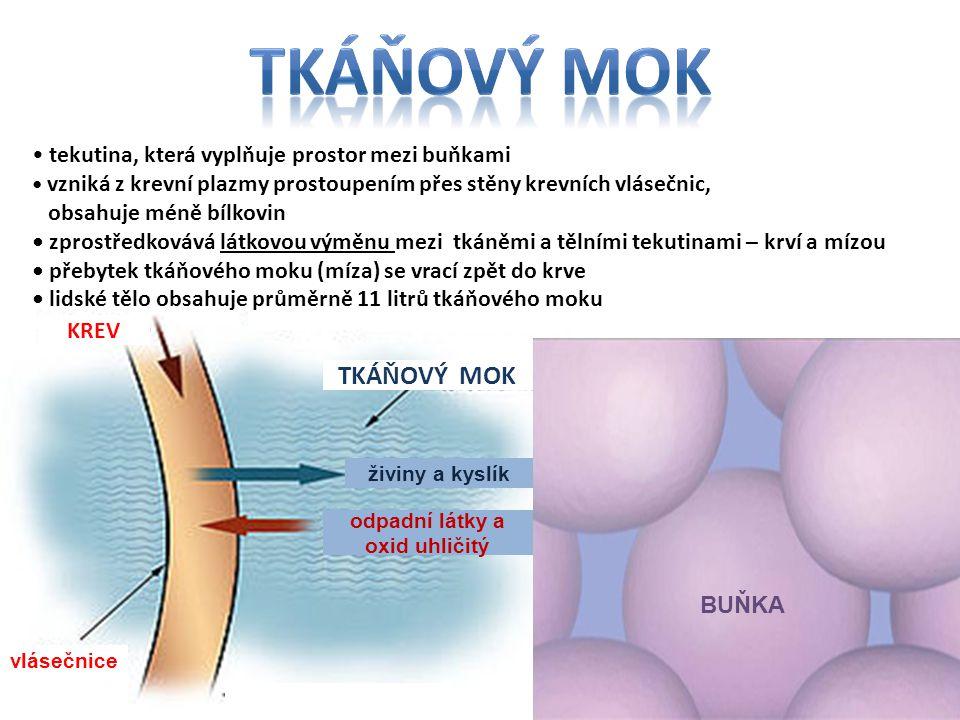 živiny a kyslík odpadní látky a oxid uhličitý BUŇKA KREV TKÁŇOVÝ MOK vlásečnice tekutina, která vyplňuje prostor mezi buňkami vzniká z krevní plazmy p