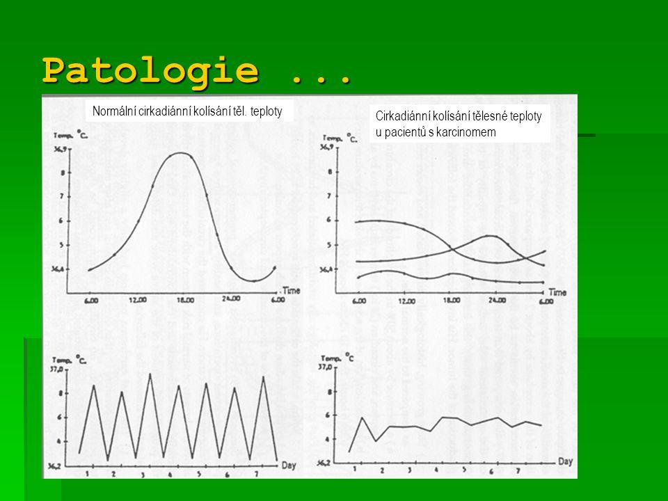 Kombinace vlivu teploty s vysokohorským prostředím změny REAKTIVNÍ změny ADAPTAČNÍ