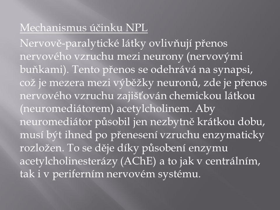 Mechanismus účinku NPL Nervově-paralytické látky ovlivňují přenos nervového vzruchu mezi neurony (nervovými buňkami).