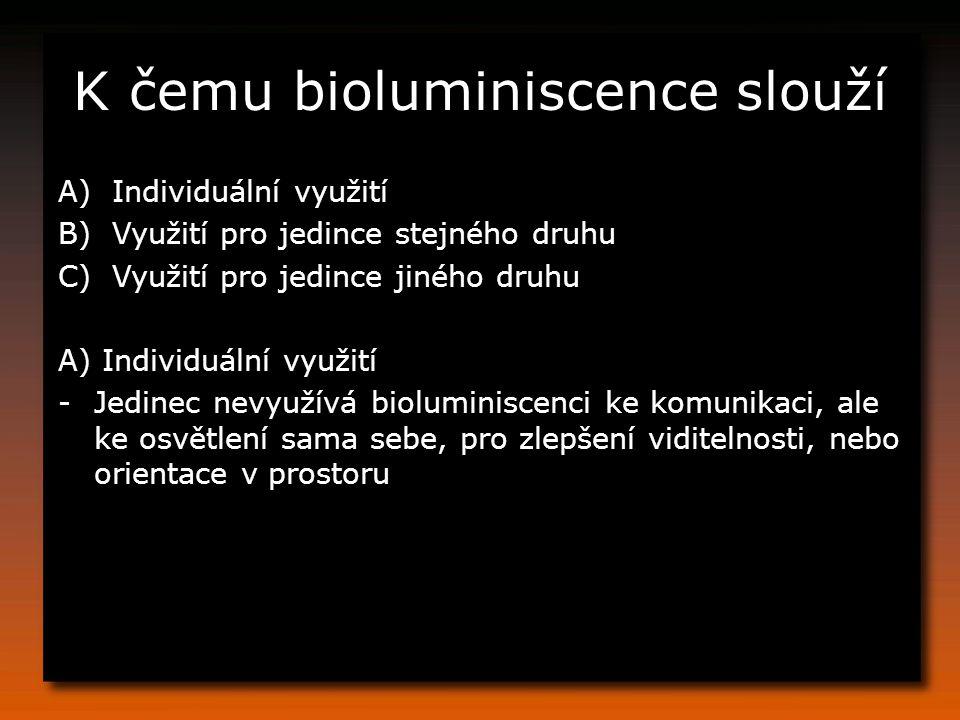 K čemu bioluminiscence slouží A)Individuální využití B)Využití pro jedince stejného druhu C)Využití pro jedince jiného druhu A) Individuální využití -Jedinec nevyužívá bioluminiscenci ke komunikaci, ale ke osvětlení sama sebe, pro zlepšení viditelnosti, nebo orientace v prostoru