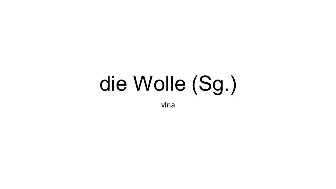 die Wolle (Sg.) vlna