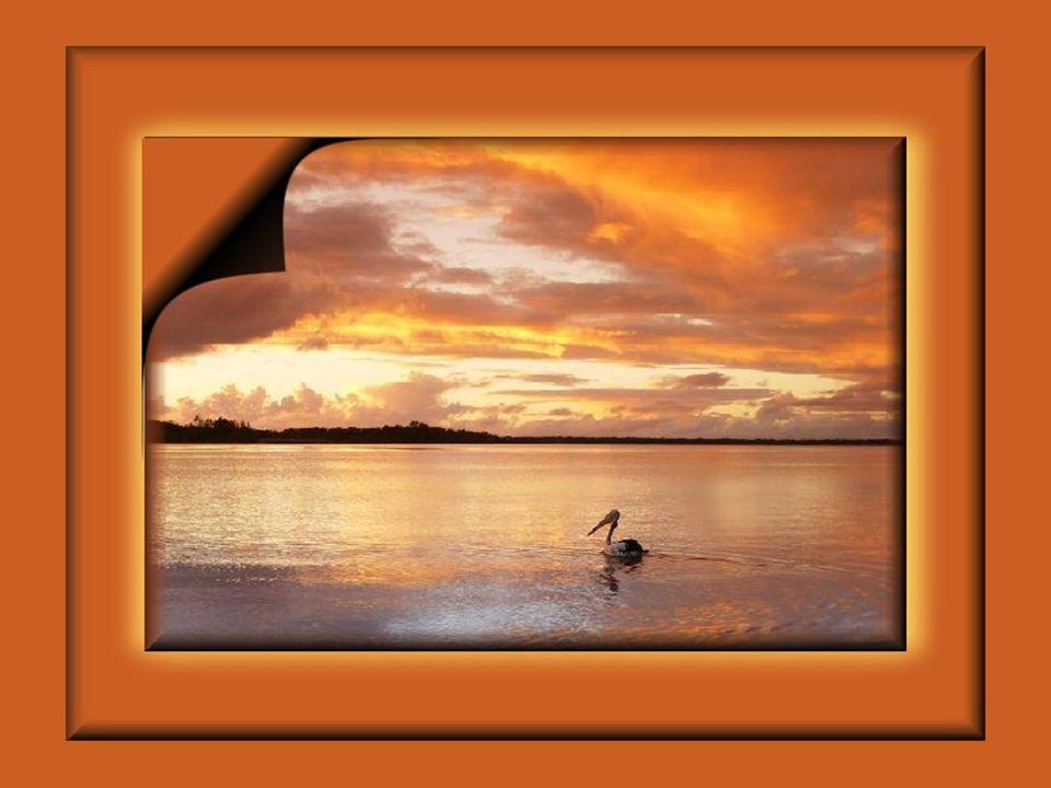 …je …je to pevná skála uprostřed oceánu; pevná neochvějná katedrála omývána proudy zlosti, přívaly radosti, oceány slz a po tisíckrát hlazena něžnými paprsky vycházejícího slunce.