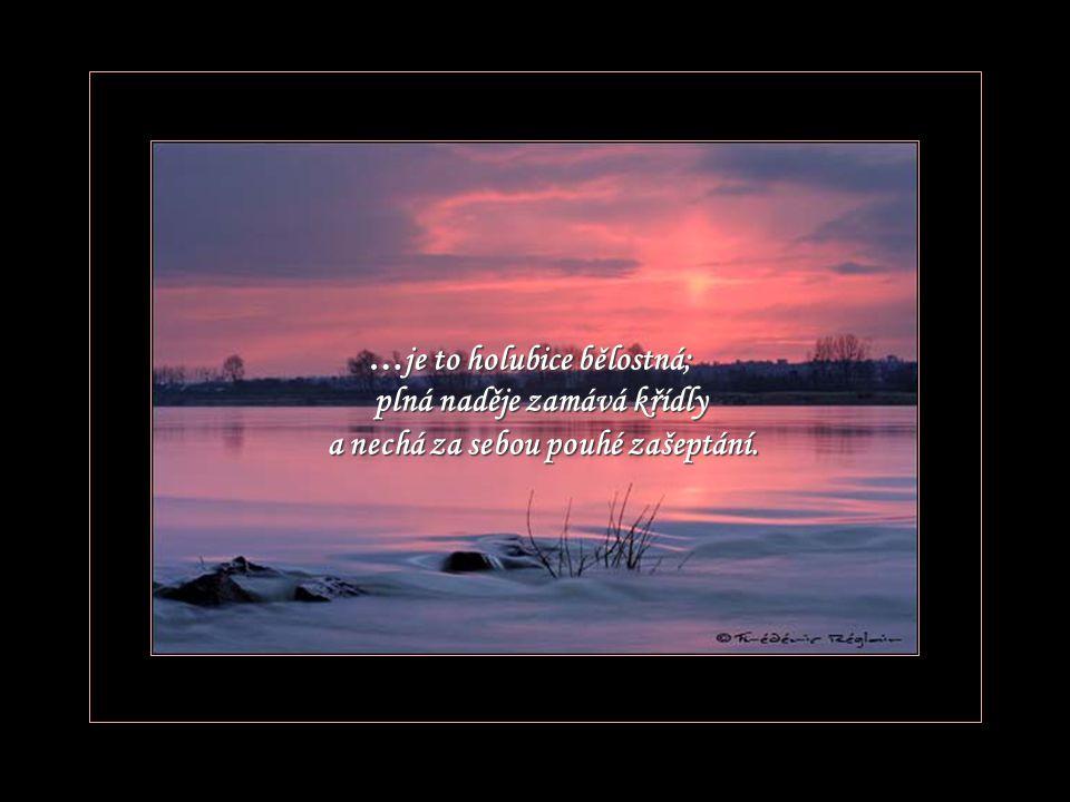 Zjeví se Ti Ti ve snu a bude Tvým Tvým strážným andělem bez svatozáře, bude Tvá Tvá a věčná.