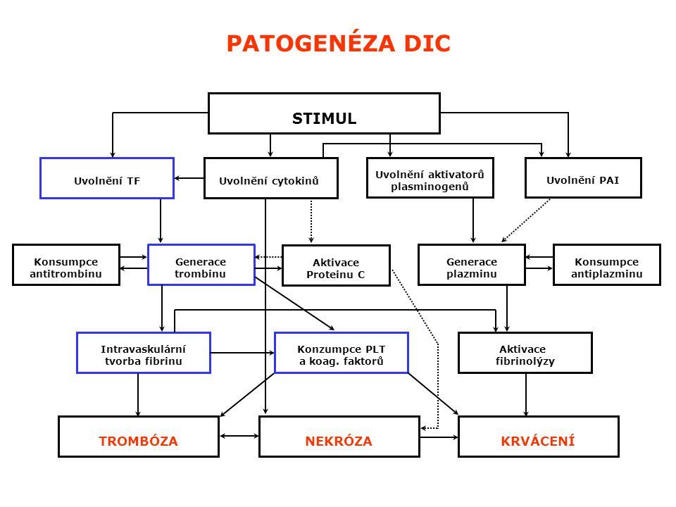 uvolnění tkáňového faktoru koagulační aktivace - vnější systém (systémová generace trombinu) generalizovaná depozice fibrinu vyvolávající onemocnění aktivace fibrinolytického systému (systémová generace plasminu) PATOFYZIOLOGICKÝ JEV PATOFYZIOLOGIE DIC - KOAGULACE pokles koagulačních faktorů prodloužení aPTT, PT vzestup FDP a D-dimerů trombocytopenie (konsumpční) LABORATORNÍ MANIFESTACE mikroangiopatická hemolytická anémie pokles fibrinogenu vyčerpání fyziologických inhibitorů krvácení trombóza / infarkt KLINICKÁ MANIFESTACE