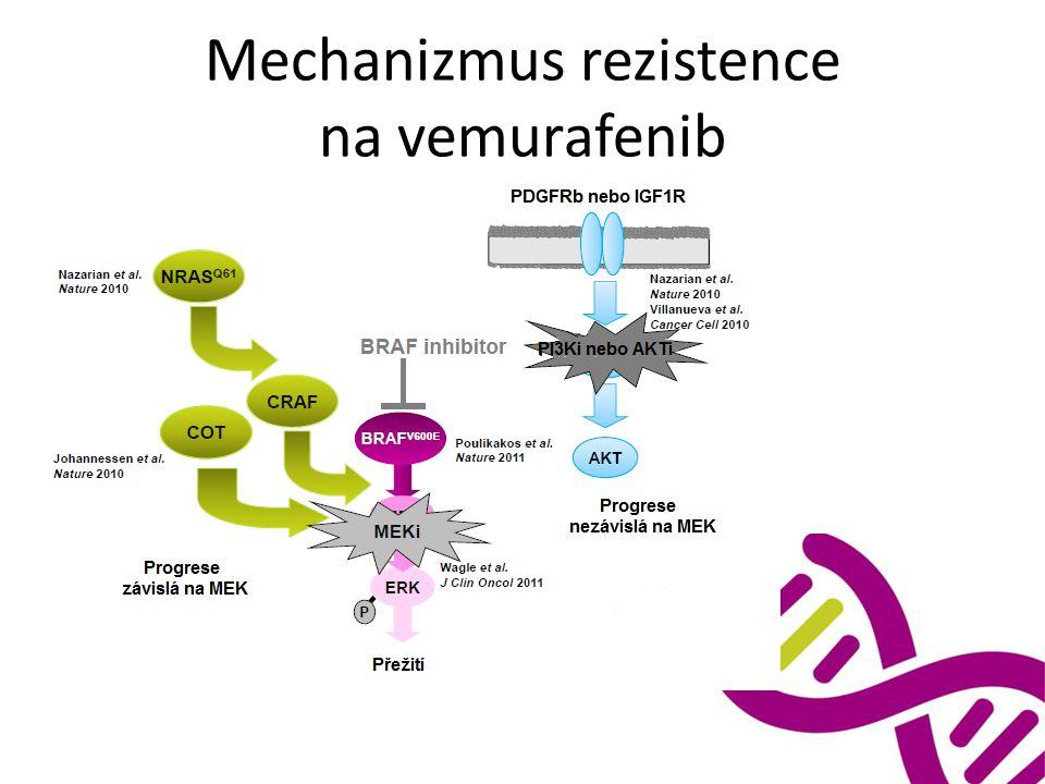 Mechanizmus rezistence na vemurafenib