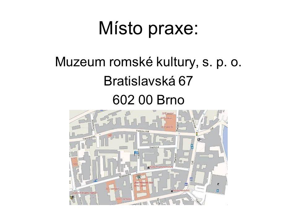 Místo praxe: Muzeum romské kultury, s. p. o. Bratislavská 67 602 00 Brno