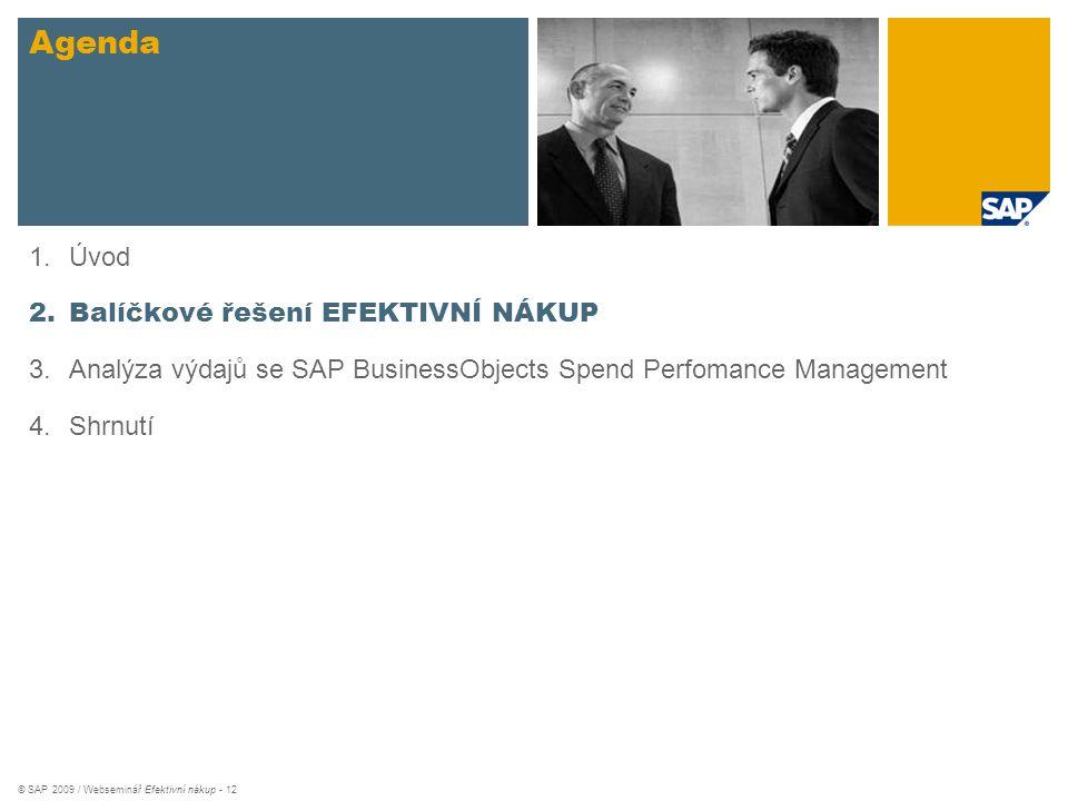 © SAP 2009 / Webseminář Efektivní nákup - 12 Agenda 1.Úvod 2.Balíčkové řešení EFEKTIVNÍ NÁKUP 3.Analýza výdajů se SAP BusinessObjects Spend Perfomance
