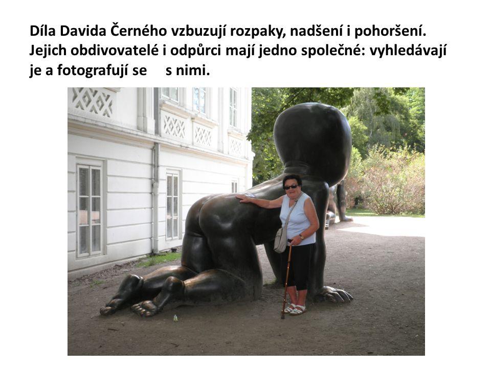 Díla Davida Černého vzbuzují rozpaky, nadšení i pohoršení. Jejich obdivovatelé i odpůrci mají jedno společné: vyhledávají je a fotografují se s nimi.
