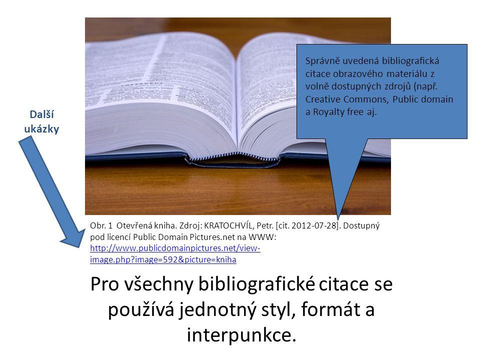 Pro všechny bibliografické citace se používá jednotný styl, formát a interpunkce.
