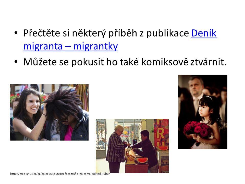 Zdroje (mimo přímé odkazy v textu ) www.czechkid.cz Halvová: Problém intergrace muslimů do západní společnosti.